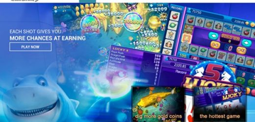 Slots Are The Most Popular Casino Game Category At Tbsbet
