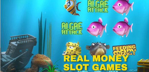 The Reasons to Play Online Slots